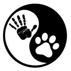 Yin-and-Yang-Dog